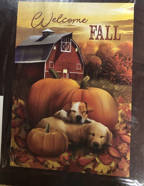 Welcome Fall Puppies GF